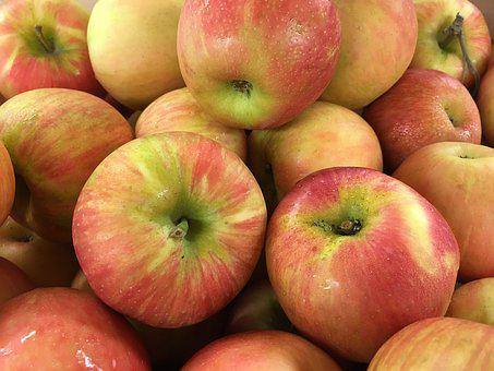 Apples, Honey Crisp, Fresh, Fruit, Produce, Agriclture