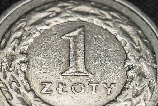 Coin, Money, Currency, Macro, Zloty, One, Metal