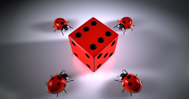Cube, Lucky Ladybug, Puzzles, Roll The Dice