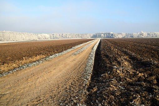 Away, Lane, Landscape, Nature, Landscape Way, Field