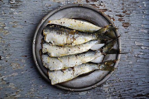 Sardines, Food, Fish, Healthy, Seafood, Fresh, Meal