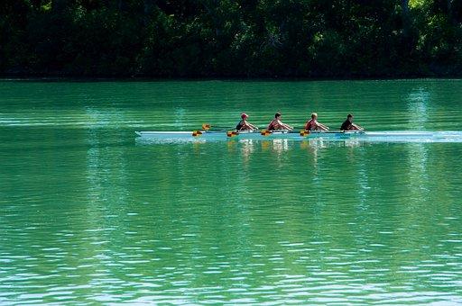 Oars, Boat, River, Water, Green, Rhône, France
