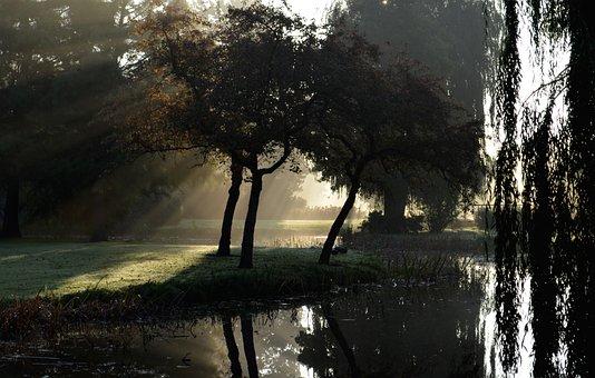 Wilhelminapark, Mist, Sun Rays, More