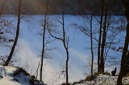 Wintry, Geforener Lake, Winter Forest