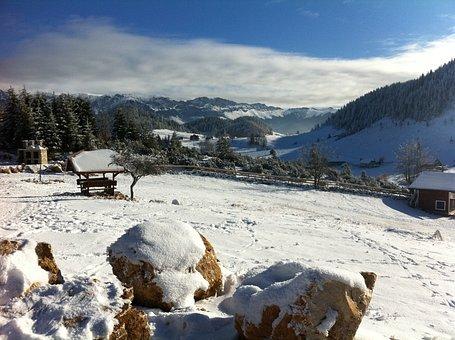 Winter, Snow, Landscape, Mountain, Fundata, Cold