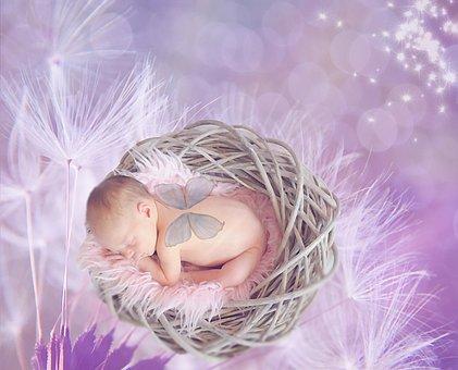 Baby, Dandelion, Female, Girl, Bokeh, Pink, Purple