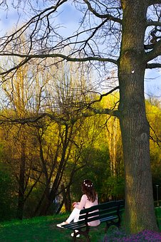 Nature, Flower Girl, Tree, Sit, Bank, Bench, Seat, Rest