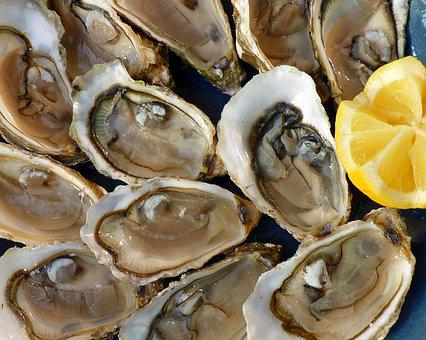 Oysters, Holidays, Sea, The Sea, Tradition