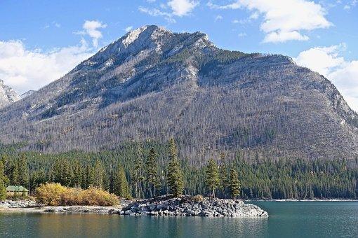 Environment, Burnt, Mountain, Bushfire, Landscape