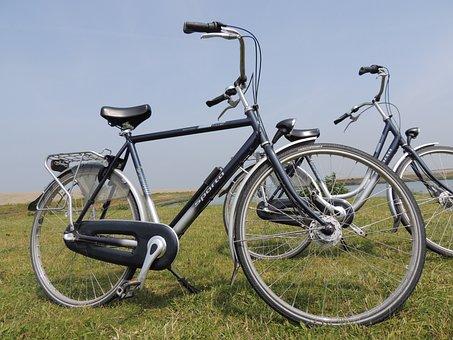 Bike, Locomotion, Transport, Meadow, Meschanik