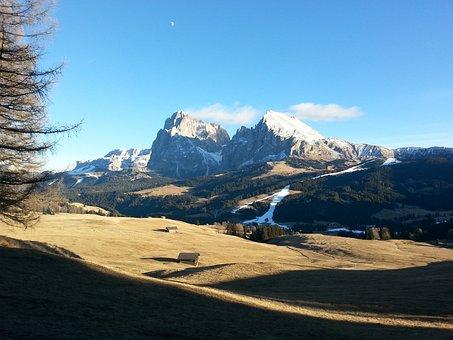 Dolomites, South Tyrol, Schlern, Nature, Italy
