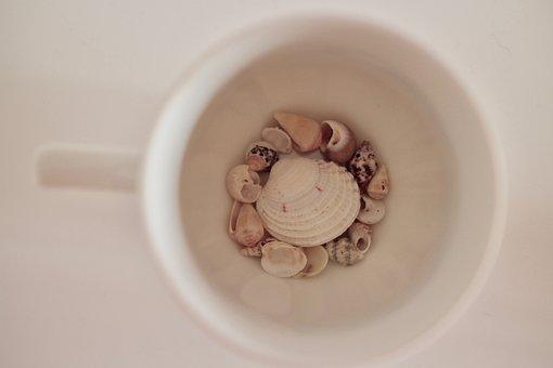 Cup, Shells, Sea, Sand, Italy, Beach, Coffee, Holidays