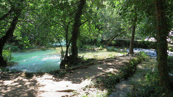 River, Tree, Nature, Beautiful, View, Summer, Tourism
