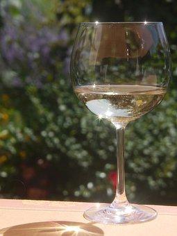 Wine, Wineglass, Drink, Alcohol, Winery, White, Liquid