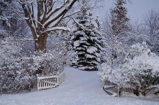 Winter Wonderland, Snow, Egbert