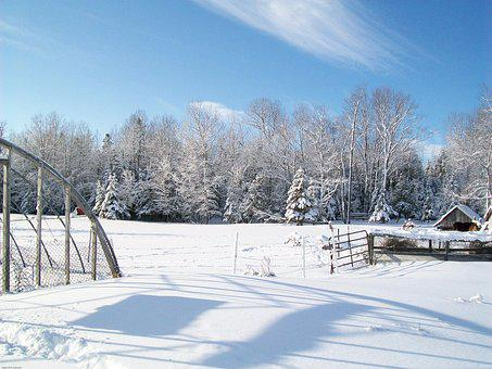Winter, Wonderland, Landscape, Countryside, Snow, Trees