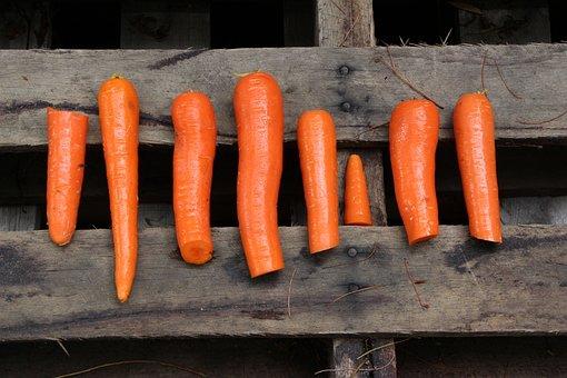Orange, Wood, Carrots, Chop, Chopped, Organic, Diet