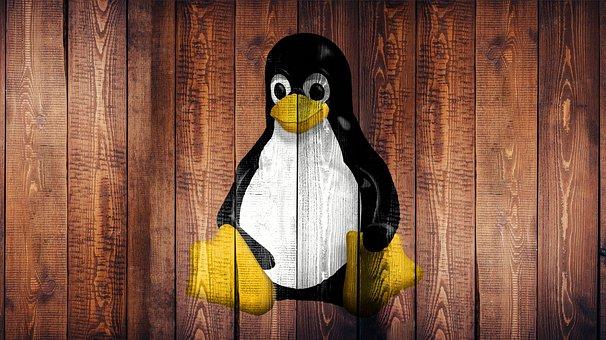 Linux, Laptop, Screen, Wallpaper, Wood, Penguin
