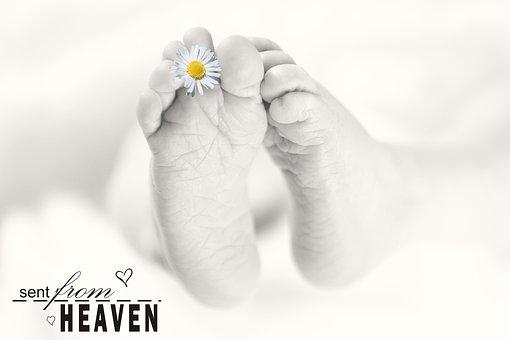 Baby Feet, Baby, Feet, Reborn, Baby Photography, Infant