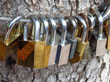 Love Locks, Love Tree, Castles, Love, Padlocks