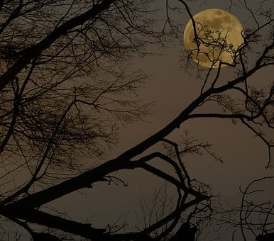 Full Moon, Night, Darkness, Lunar Landscape, Mystical