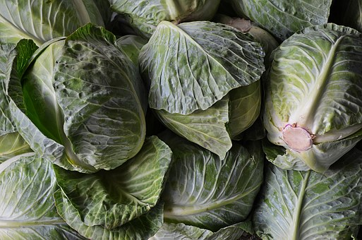 Cabbage, Vegetables, Agriculture, Natural Food, Eat