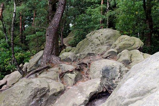 Dörenther Clip, Teutoburg Forest, Stones, Rock