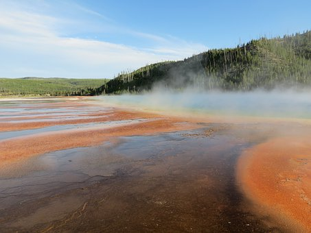 Geyser, Thermal Feature, Hot Pool, Yellowstone