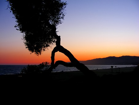 Sunset, Sea, Pacific Ocean, Ocean, Pacific, Water