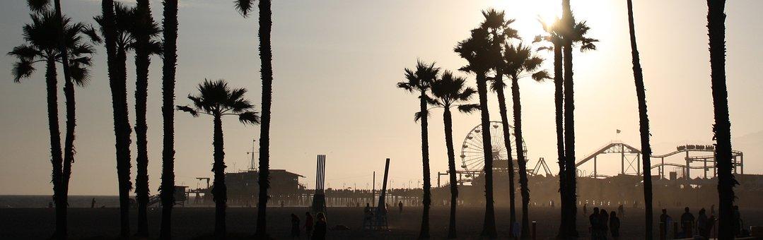 Beach, Scene, Silhouette, Palm Trees, Santa Monica