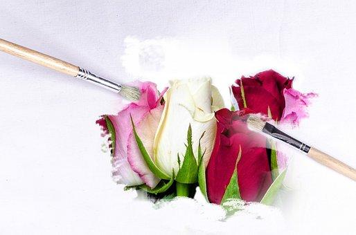 Paintbrush, Outdoor, Flower, Flowers, Wallpaper, Clear