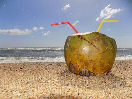 Beach, Rest, Coconut Water, Coconut, Drink, Fruit