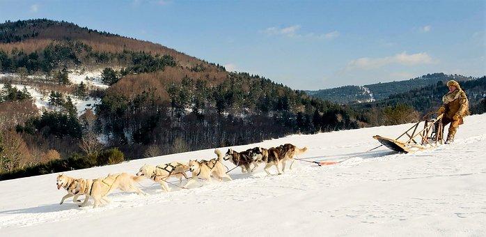 Winters, Snow, Nature, Mountain, Landscape, Cold, White