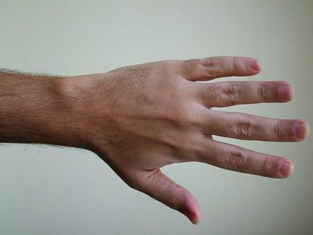 Body, Hand, Detail