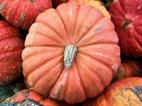 Decorative, Pumpkin, Harvest, Autumn, Fall, Halloween