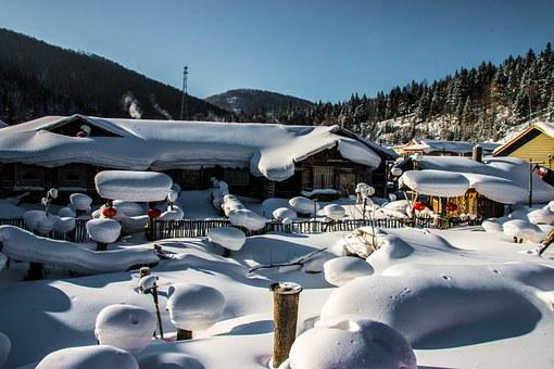 Snow Village, Snow, Village, Snow Mushrooms