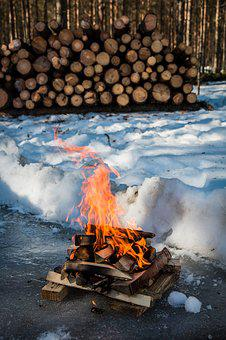 Campfire, Fire, Winter, Snow, Nature, Woodpile, Camping