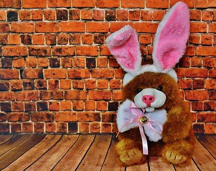 Easter, Funny, Teddy, Rabbit Ears, Happy Easter