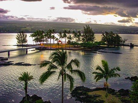 Coconut, Island, Hilo, Hawaii, Palm, Trees, Dusk