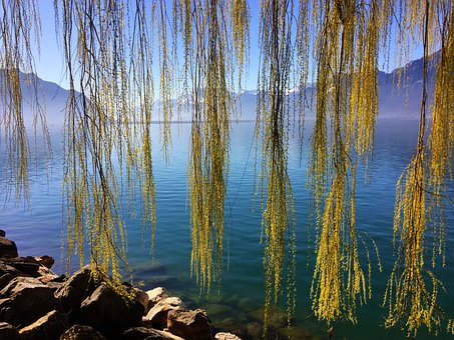Switzerland, Lake Geneva, Montreux, Water, Mood
