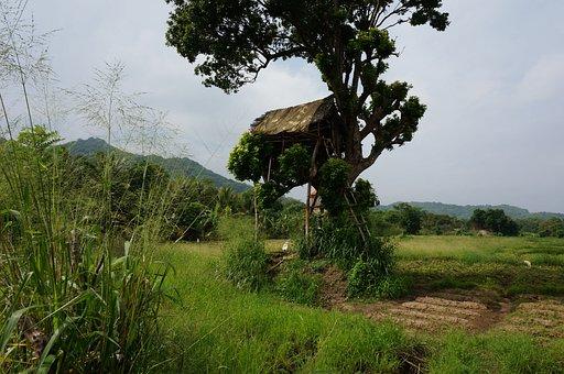 Sri Lanka, Srilanka, Banita, Banita Tour, Tourism