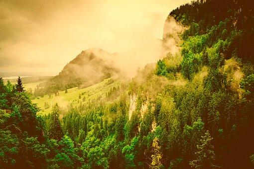 Germany, Bavaria, Sunrise, Morning, Fog, Beautiful