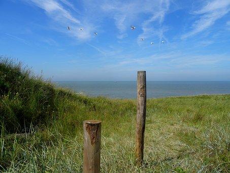 North Sea, Beach, Dune, Dune Grass, Outlook, Sea View