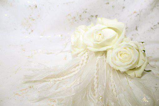Roses, White, Blossom, Bloom, Background, Wedding