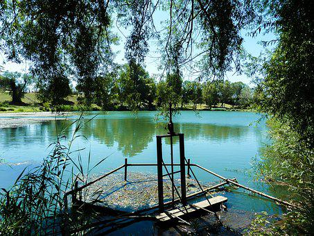 Lake, Vallabrègues, Water, Vegetation, Nature, Green