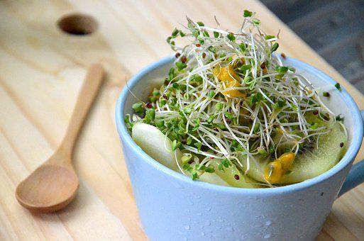 Broccoli Sprouts, Super Food, Anti Cancer
