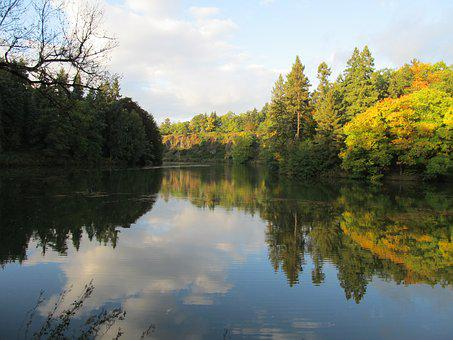 Trees, Water, Nature, Pruhonice Park