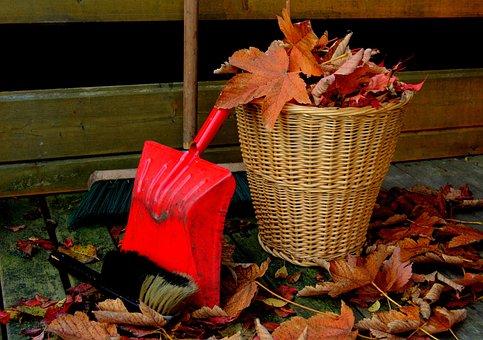 Autumn, Leaves, Golden Autumn, Fall Foliage, Leaf
