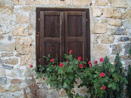 Wall, Window, Roses