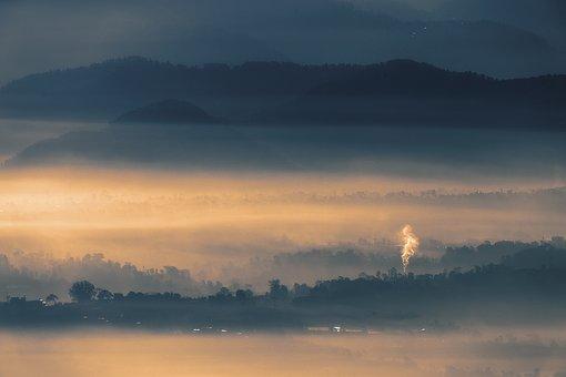 Landscape, Fog, Sunrise, Forest, Foggy, Light, Mist